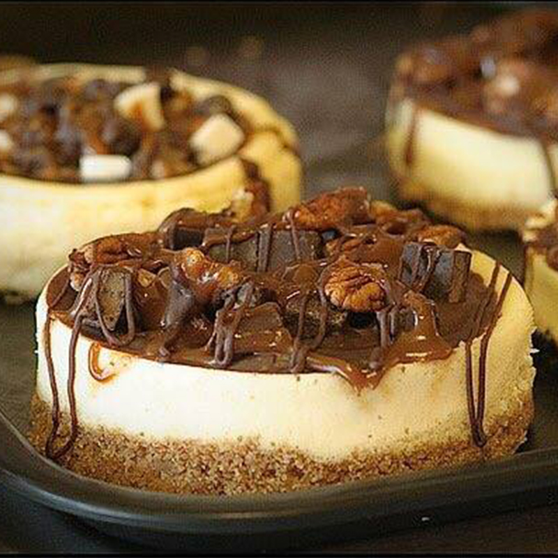 cheesecakes-page-4-inch-turtle